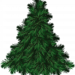 Download for free Fir-Tree PNG Image