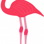 Download for free Flamingo  PNG Clipart