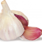 Best free Garlic  PNG Clipart