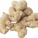 Download this high resolution Ginger High Quality PNG