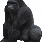 Best free Gorilla PNG Image Without Background