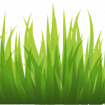 Now you can download Grass Icon