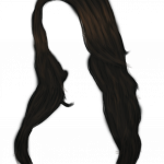 Now you can download Hair PNG Picture