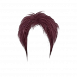 Download for free Hair In PNG