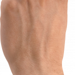 Download this high resolution Hands PNG