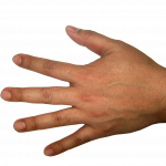 Download this high resolution Hands PNG Picture