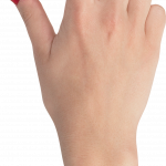 Best free Hands  PNG Clipart