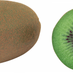 Download and use Kiwi PNG Image