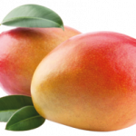 Download for free Mango PNG Icon
