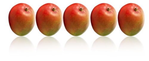 Download this high resolution Mango PNG in High Resolution