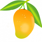 Download for free Mango PNG Image Without Background