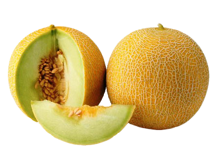 Grab and download Melon Icon Clipart