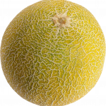 Download this high resolution Melon PNG Image Without Background