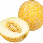 Free download of Melon PNG Picture