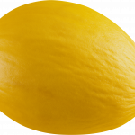 Download this high resolution Melon PNG Picture