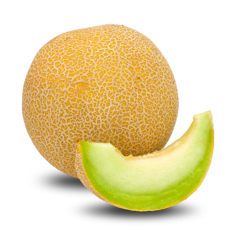 Now you can download Melon Icon Clipart