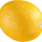 Download this high resolution Melon PNG in High Resolution