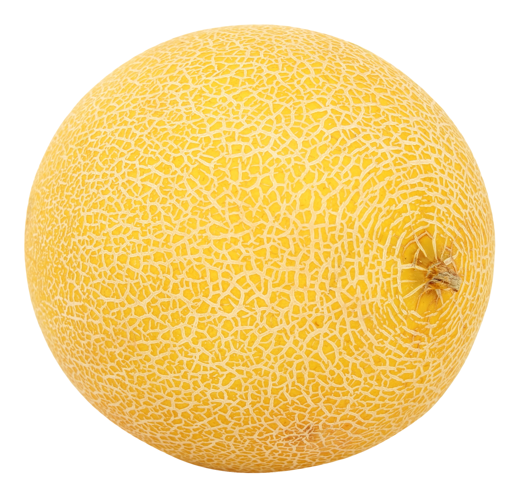 Grab and download Melon PNG Image
