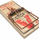 Download this high resolution Mouse Trap High Quality PNG