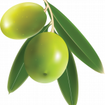 Download for free Olives Icon