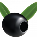 Free download of Olives PNG Image Without Background