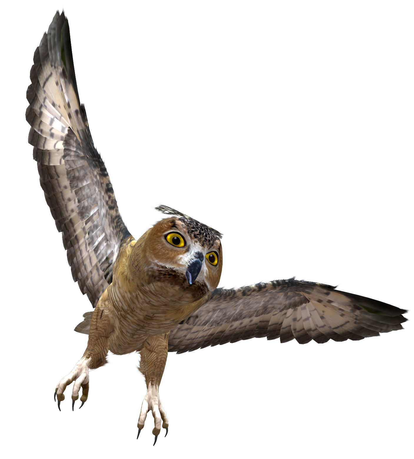 Grab and download Owls High Quality PNG