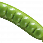 Download for free Pea PNG Icon