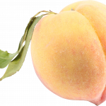 Download this high resolution Peach PNG Picture