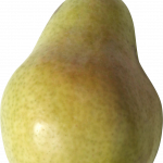 Best free Pear PNG Picture