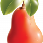 Best free Pear Transparent PNG Image