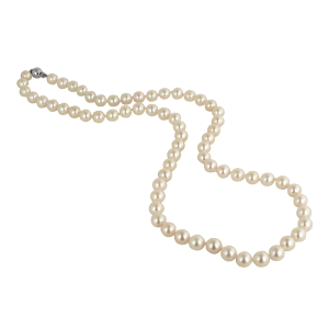 Pearls Transparent PNG Image | Web Icons PNG