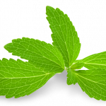 Download this high resolution Pepermint PNG Picture