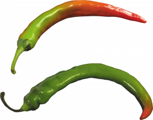 Best free Pepper PNG