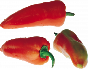 Download for free Pepper Icon PNG