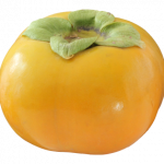 Best free Persimmon PNG Image