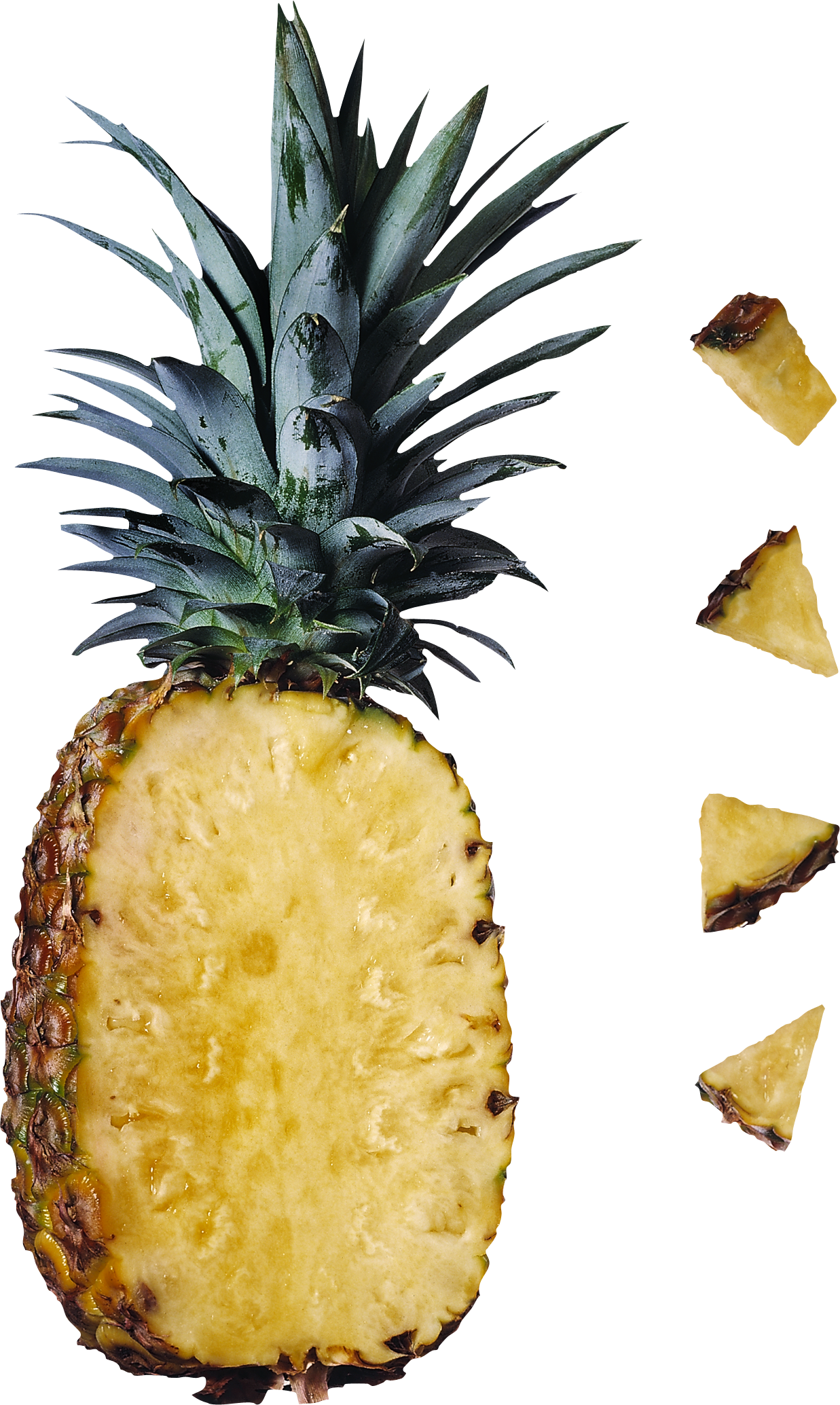 Download and use Pineapple In PNG