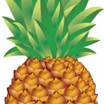Best free Pineapple PNG in High Resolution