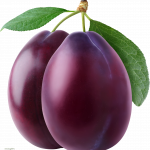 Download and use Plum Icon PNG