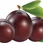 Download for free Plum PNG Icon