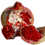 Download for free Pomegranate PNG Image Without Background