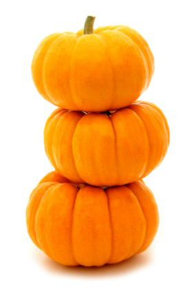 Download for free Pumpkin Transparent PNG File