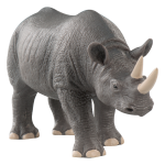 Download for free Rhino PNG