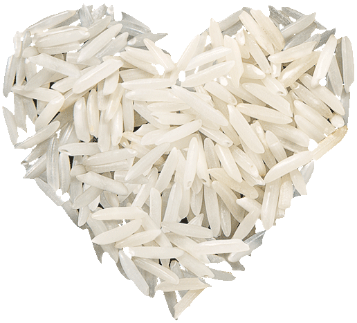 Free download of Rice PNG Picture