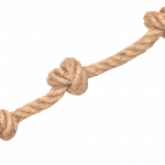 Best free Rope PNG Picture