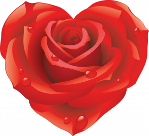 Download this high resolution Rose PNG Picture
