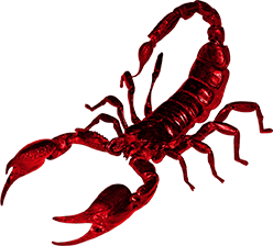 Download and use Scorpions High Quality PNG