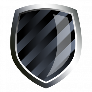 Download for free Shield Transparent PNG Image