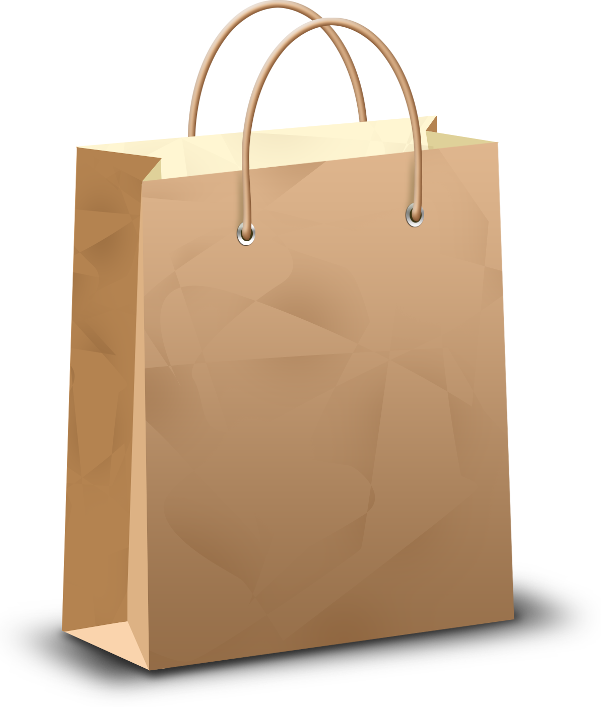 Grab and download Shopping Bag PNG Picture