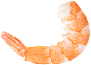 Now you can download Shrimps Icon