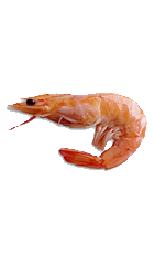 Now you can download Shrimps PNG Picture